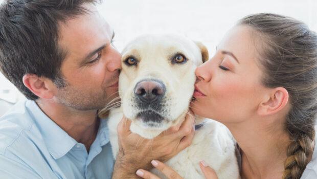 Pet Parents or Pet Owners